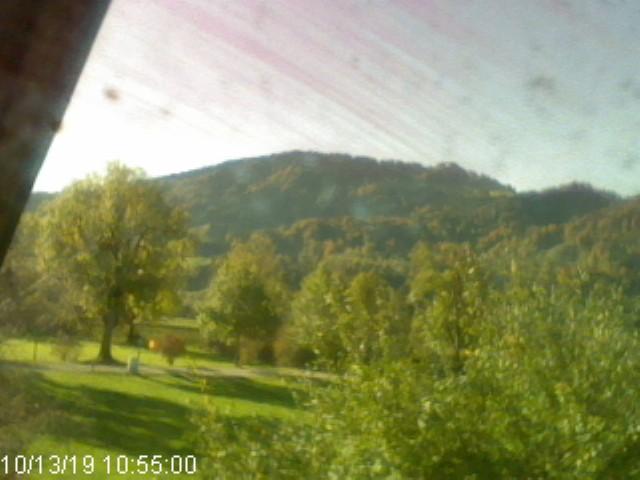 Webcam Skigebied Immenstadt - Mittag Blick auf Mittag - Allgäuer Alpen